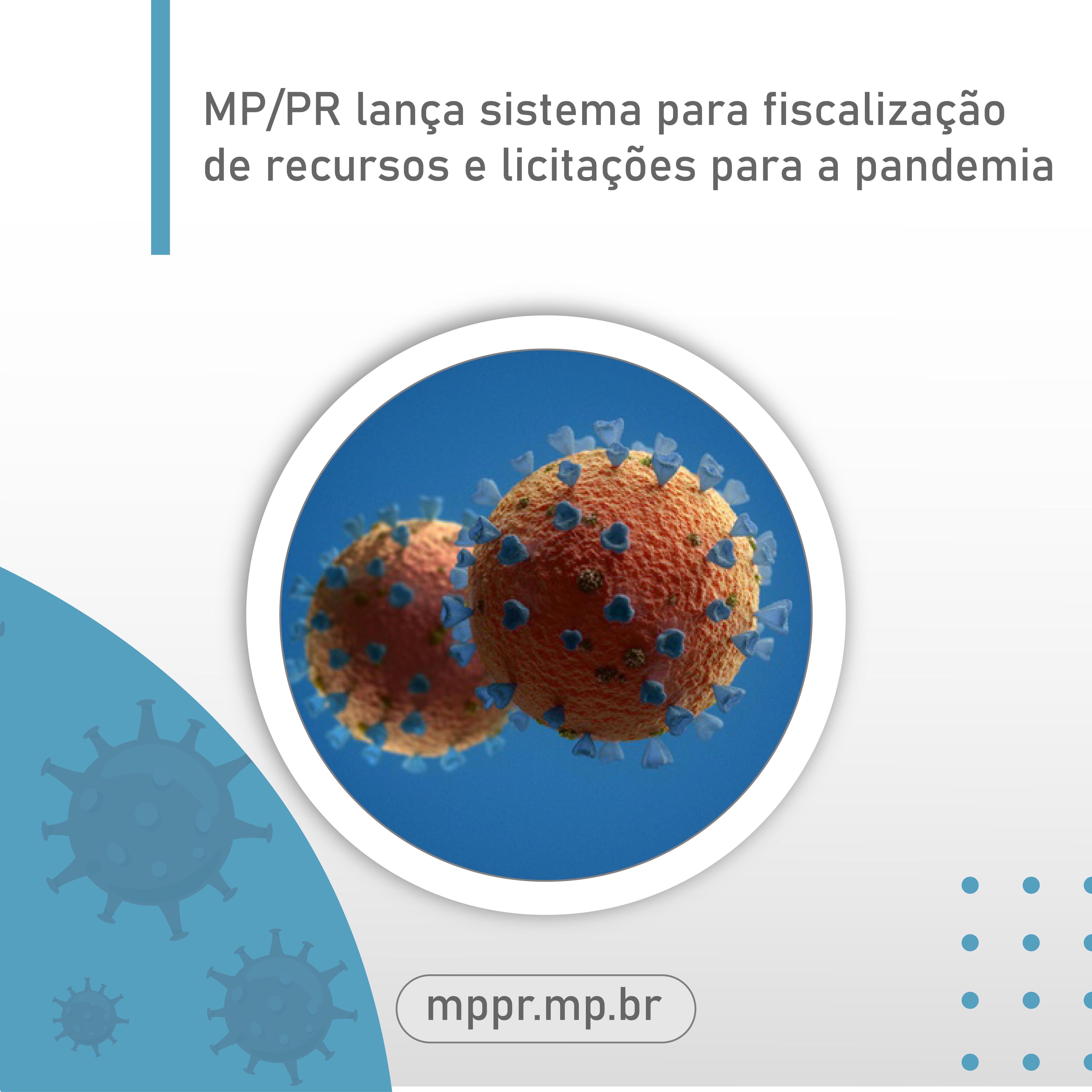 29 05 MPPR