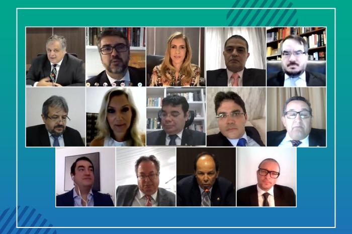 Mosaico dos conselheiros em videoconferência