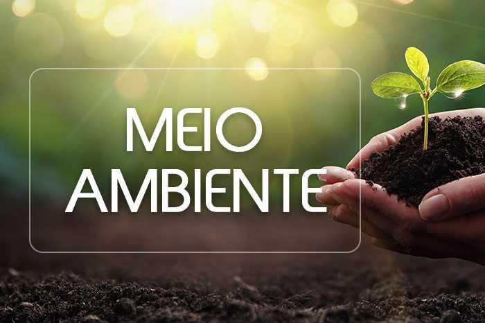 meio ambiente banner