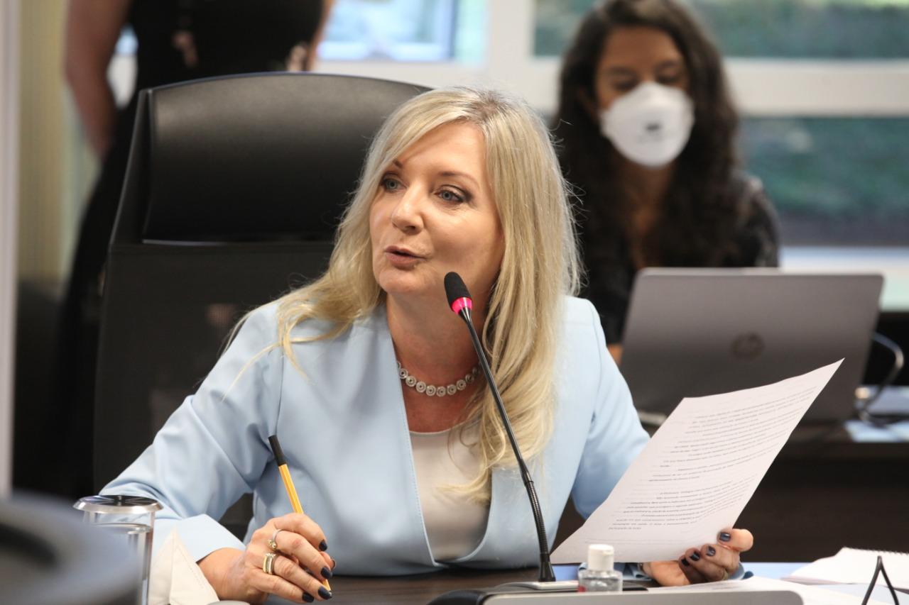 Conselheira Sandra Krieger